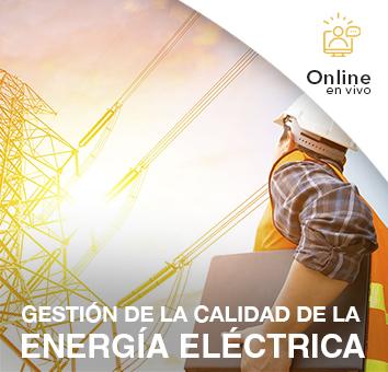 GESTIÓN DE LA CALIDAD DE LA ENERGÍA ELÉCTRICA -Online en VIVO-